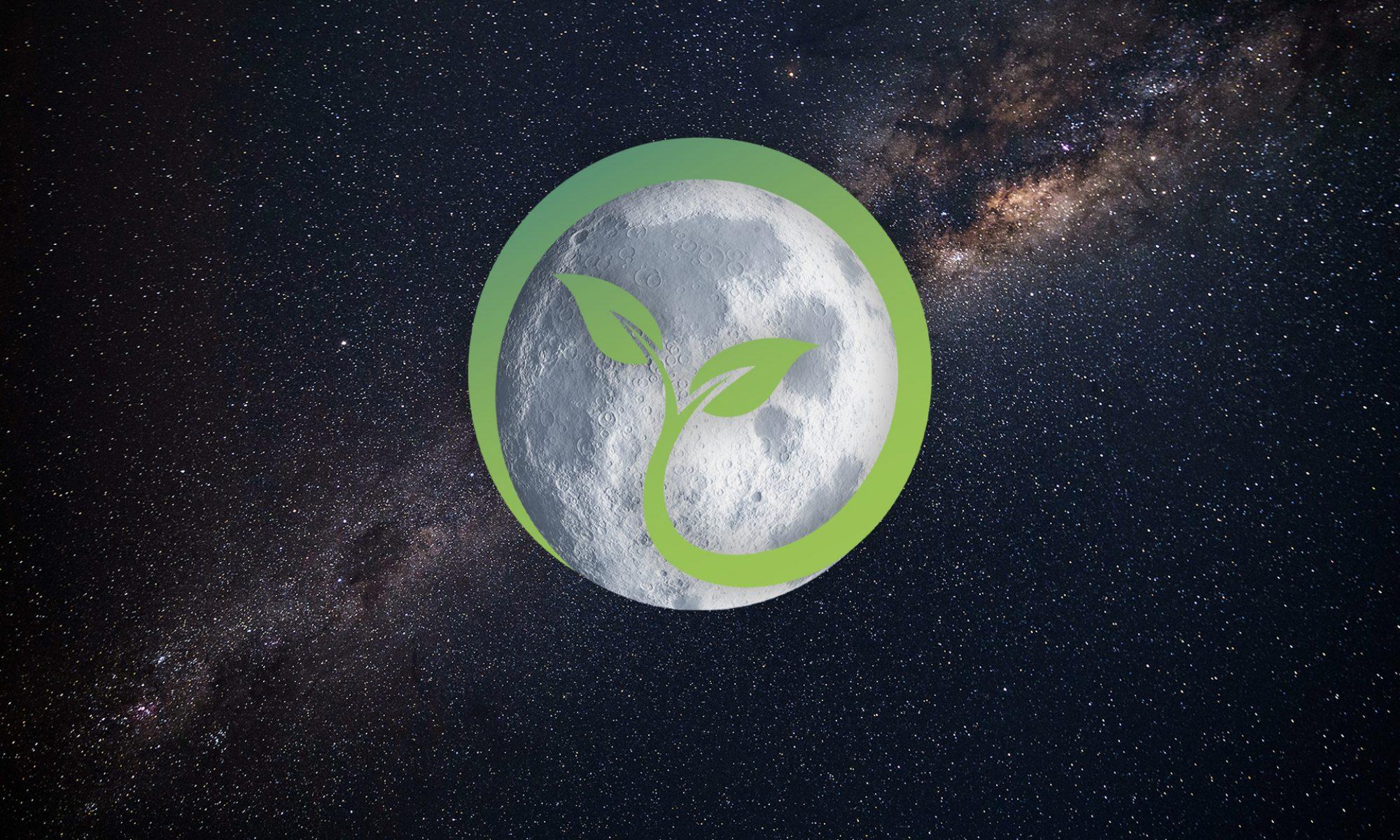 Plant the Moon Challenge